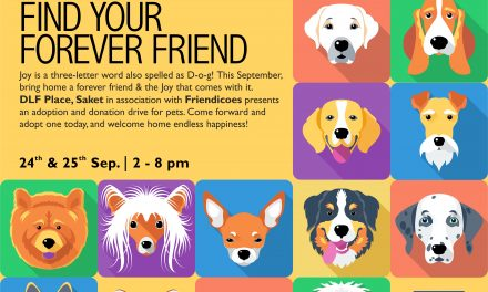 Find your forever friend @ DLF Place, Saket  Pet donation and adoption drive with Friendicoes