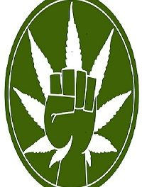 The Fight to Legalize Marijuana and Why it is a Serious Thing