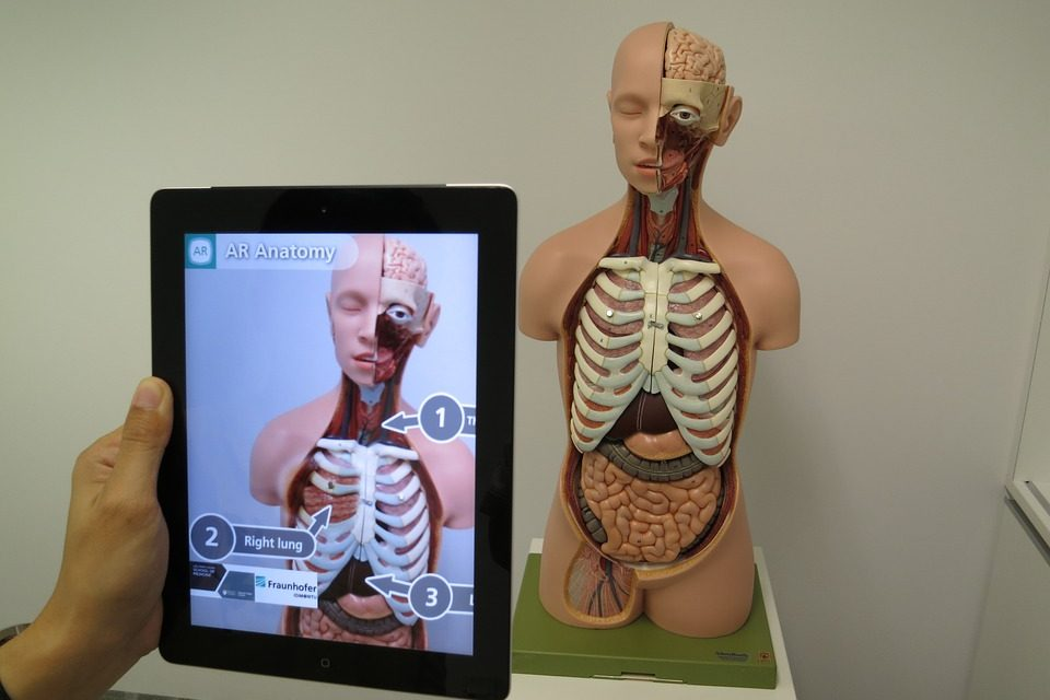 Augmented Reality and Virtual Reality in Healthcare Industry  Leaps Forward, New Research Discusses Driving Factors