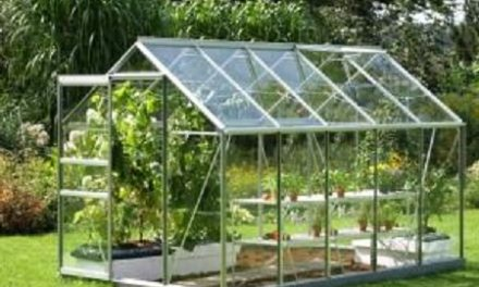 Annual 14.12% Growth expected for Global Smart Greenhouse Market by 2022