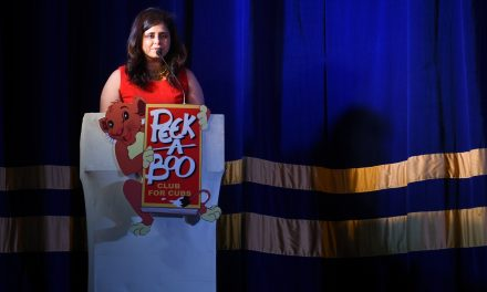 """CLUB FOR CUBS. Peek-a-Boo institute for Pre School education organization its musical concert 2017 """"Dance of the world"""". The bonanza saw the presence of Pavni Pandey & Asees Kaur."""