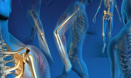 Orthopedic Devices Market to fortify Egypt Medical Device Industry: Ken Research