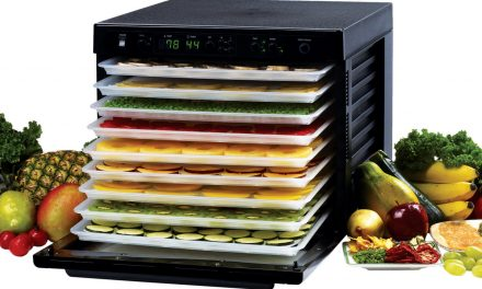 Japan Food Dehydrators Industry – Size, Share and Market Forecast upto 2022