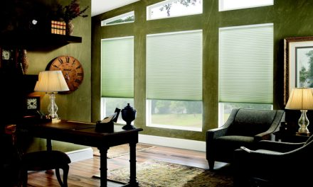 Special 50% offer | Honeycomb Blinds  | Century Blinds
