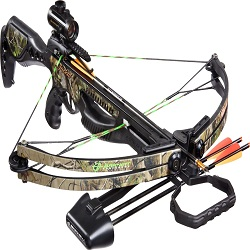 2017 Forecast – Crossbows Global Market News, Corporate Financial Plan, Supply and Revenue to 2022