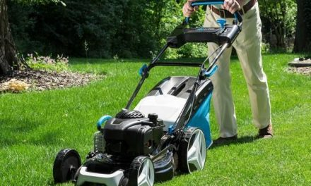 Lawn mowing and Gardening's Scientifically Tailored Approach To Your Lawn Care Services