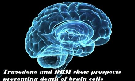 Trazodone and DBM show prospects preventing death of brain cells