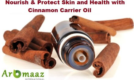 Nourish & Protect Skin and Health with Cinnamon Carrier Oil offered at Aromaaz International