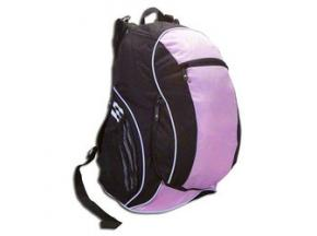 Global Soccer Bags Sales Market Report 2017