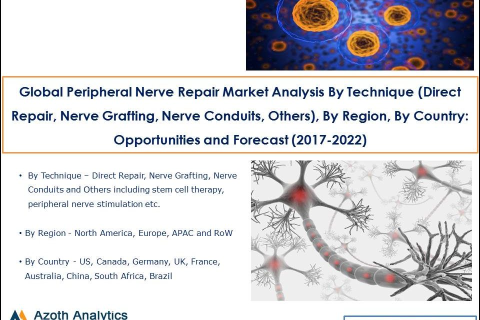 Global Peripheral Nerve Repair Market Analysis By Technique (Direct Repair, Nerve Grafting, Nerve Conduits, Others), By Region, By Country: Opportunities and Forecast (2017-2022)