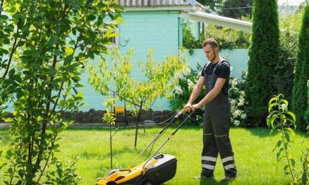 Benefits Of Hiring Lawn Mowing Services For Your Lawn