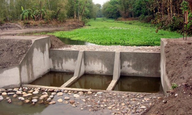 WABAG, NABARD & NGOS ink MoUs for Watershed Programs