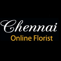 Send New Year & Christmas Gifts to Chennai – Cake & Flower in Chennai