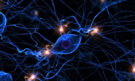 Stem Cell Reconstructive Market Strategic Assessment of Emerging Technologies in – by 2027